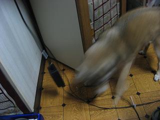 2009122705